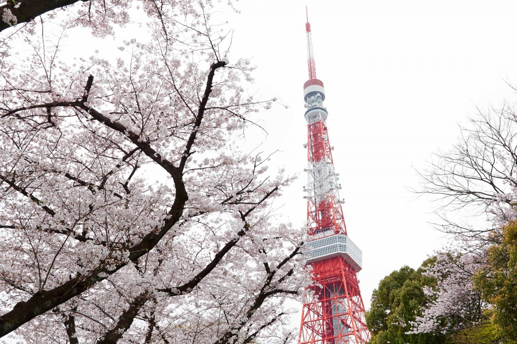 jomc_p_tokyo_0000576 (1)