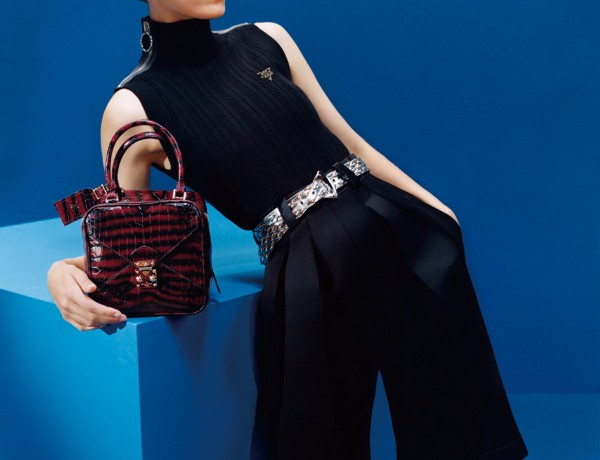 Neo Square PM in crocodilian leather, zebra shadow bordeau