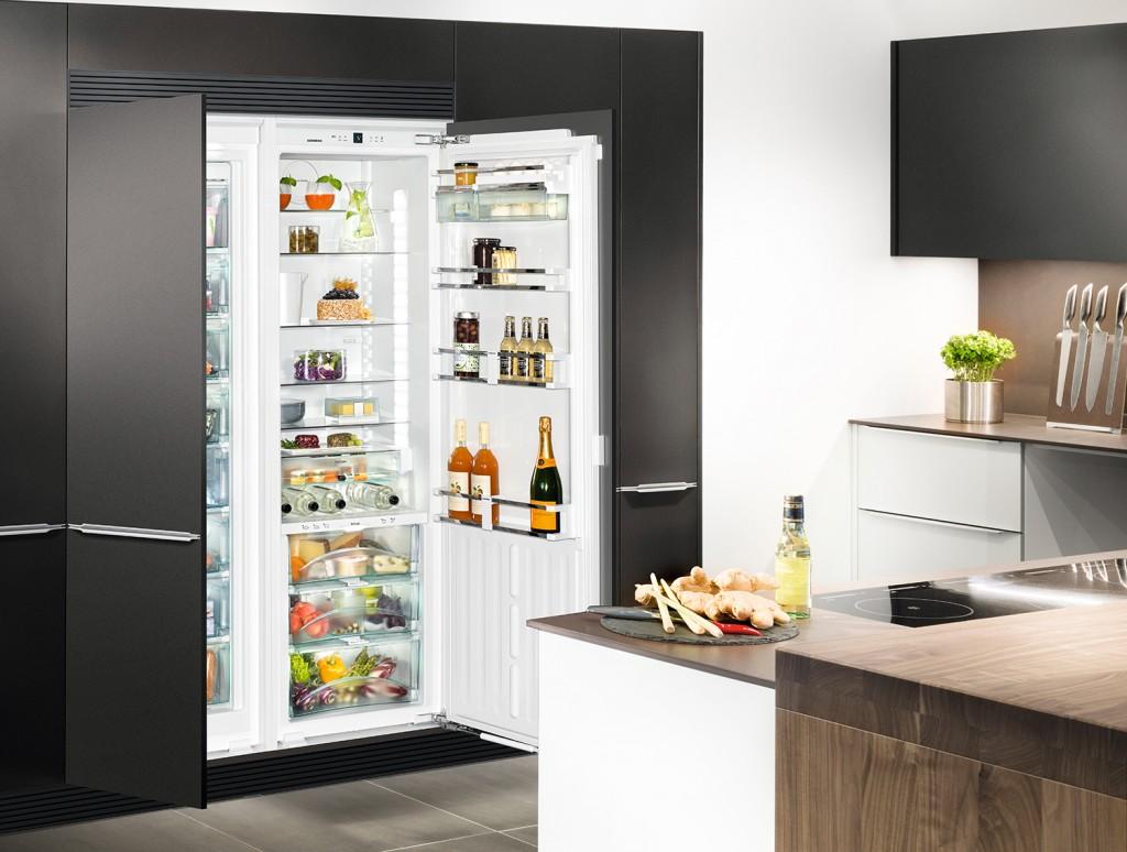 10-LIEBHERR全嵌式冰箱-2